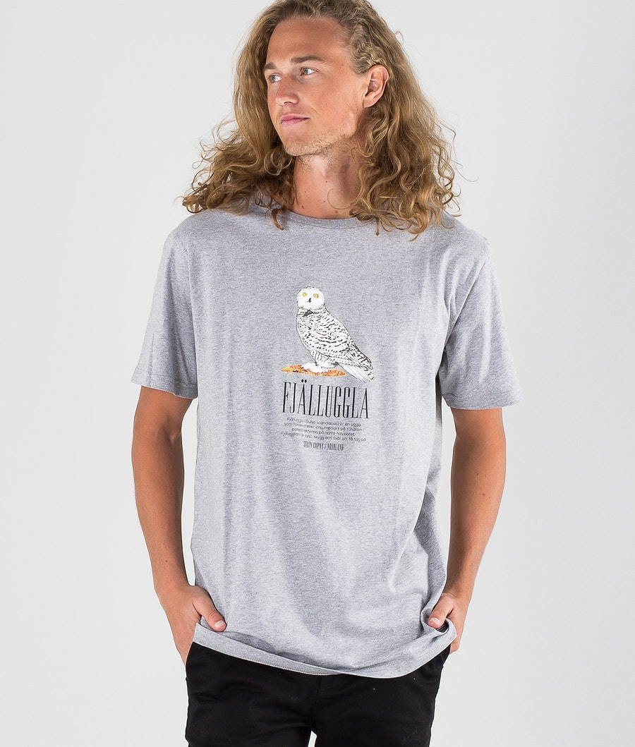 SQRTN Fjälluggla T-shirt Heather Grey